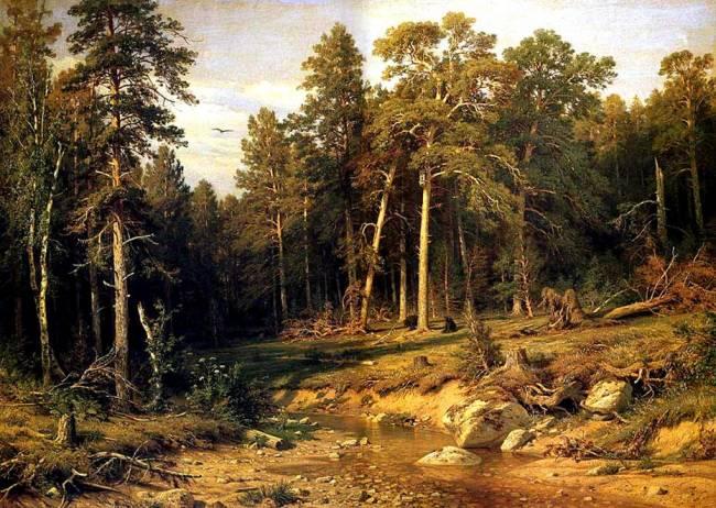Леса, наводящие ужас, которые лучше не посещать