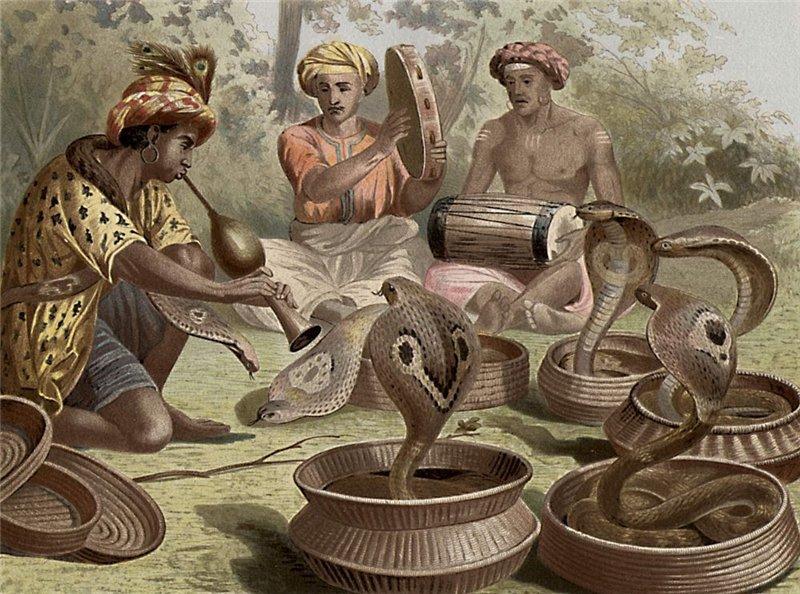 Змеи им не страшны  (4 фото)