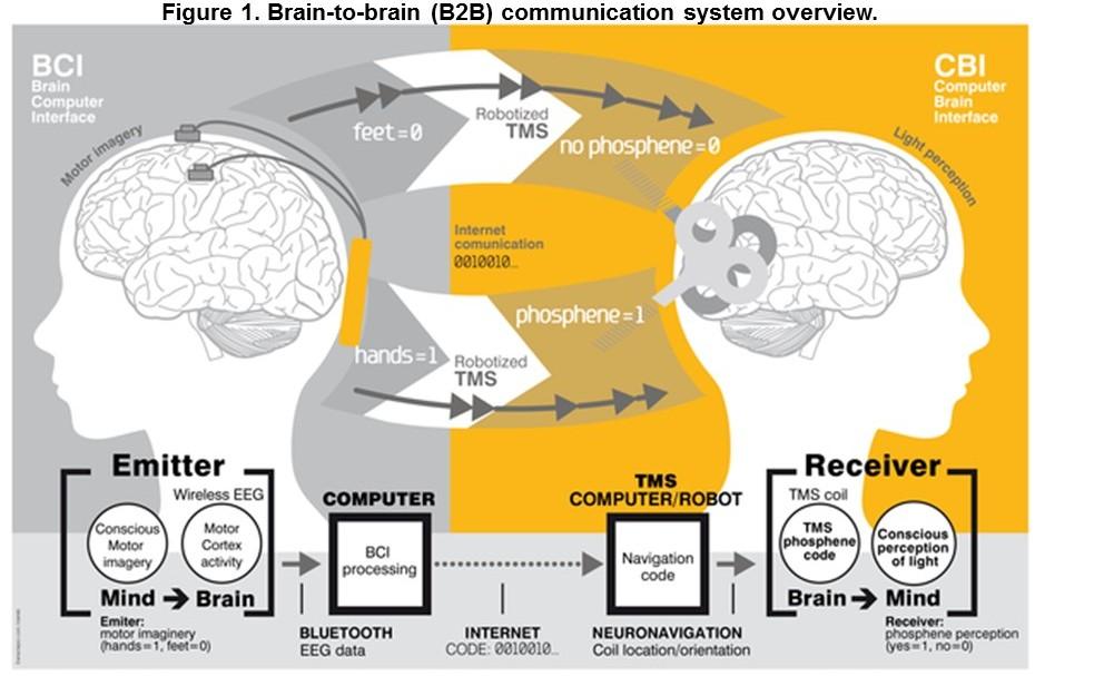 Ученые переслали сообщение из одного мозга в другой