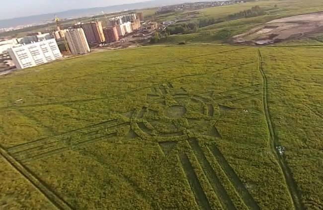 В Красноярске обнаружили огромный узор на траве (5 фото)