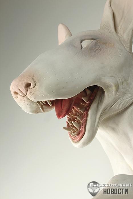 Жуткие создания скульптора Санада