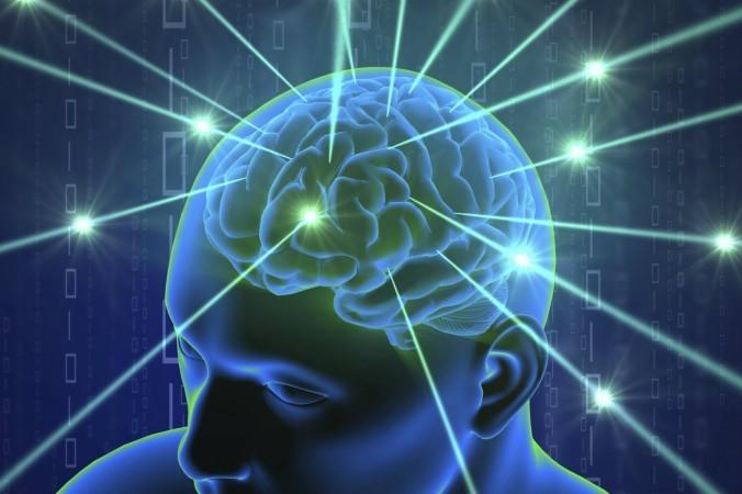 Картинки по запросу внутренняя gps мозга