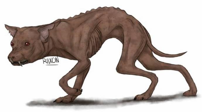 В Нижегородской области неизвестный зверь высасывает кровь из кур