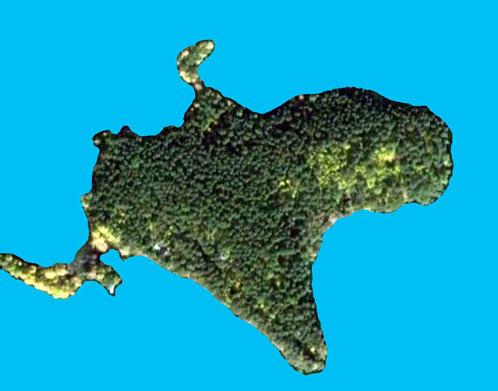 На снимке из космоса ров виден в виде темной плосы по нижнему участку суши.