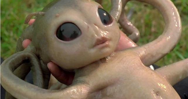 Как размножаются инопланетяне?