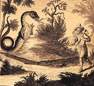 Татцельвурм - загадочный австрийский «червь с ногами» (3 фото)