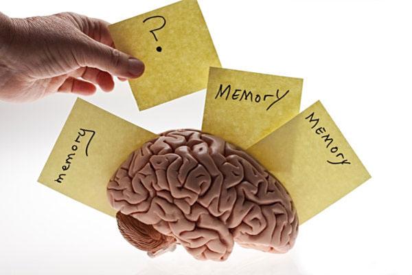 Может ли ваш мозг на самом деле «заполниться»?