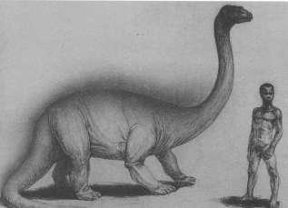 Космопоиск поедет в Конго искать живого динозавра (2 фото)