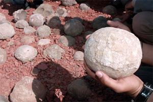 Яйца завропод, найденные в Индии в2007году. Фото ссайта news.nationalgeographic.com